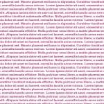 145516 LOREM IPSUM BURGUNDY