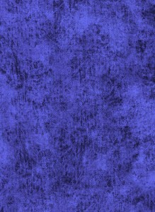 3212-025+Blueberry