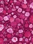 3515-002+Rose+Garden-dahlia
