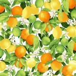 3556-002+Citrus+Grove-morning+light