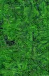 3624-003+Dots-Bright+Green