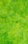 3626-004+Petals-Lime
