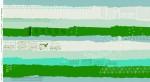 5003-43.Bespoke.Ephemera.Green