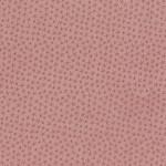 3204-001 STARFISH-BLEACHED SAND