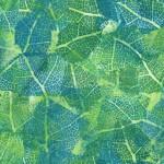 3359-001 Leaf Study-Hosta