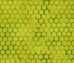 3362-002 Seed Dot-Kiwiberry