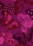 0058-55.Flutter.Flutter-Fuchsia.Rayon