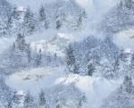 ES529 SNOW